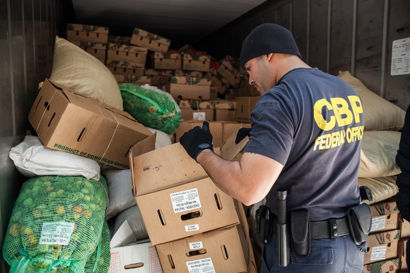 An Office of Field Operations Officer looks through crates and bags of fruits and vegetables that have come in on a container ship.