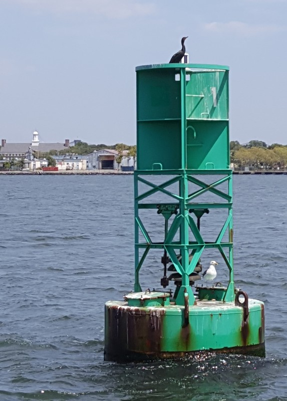Buttermilk Channel Entrance Lighted Gong Buoy 1